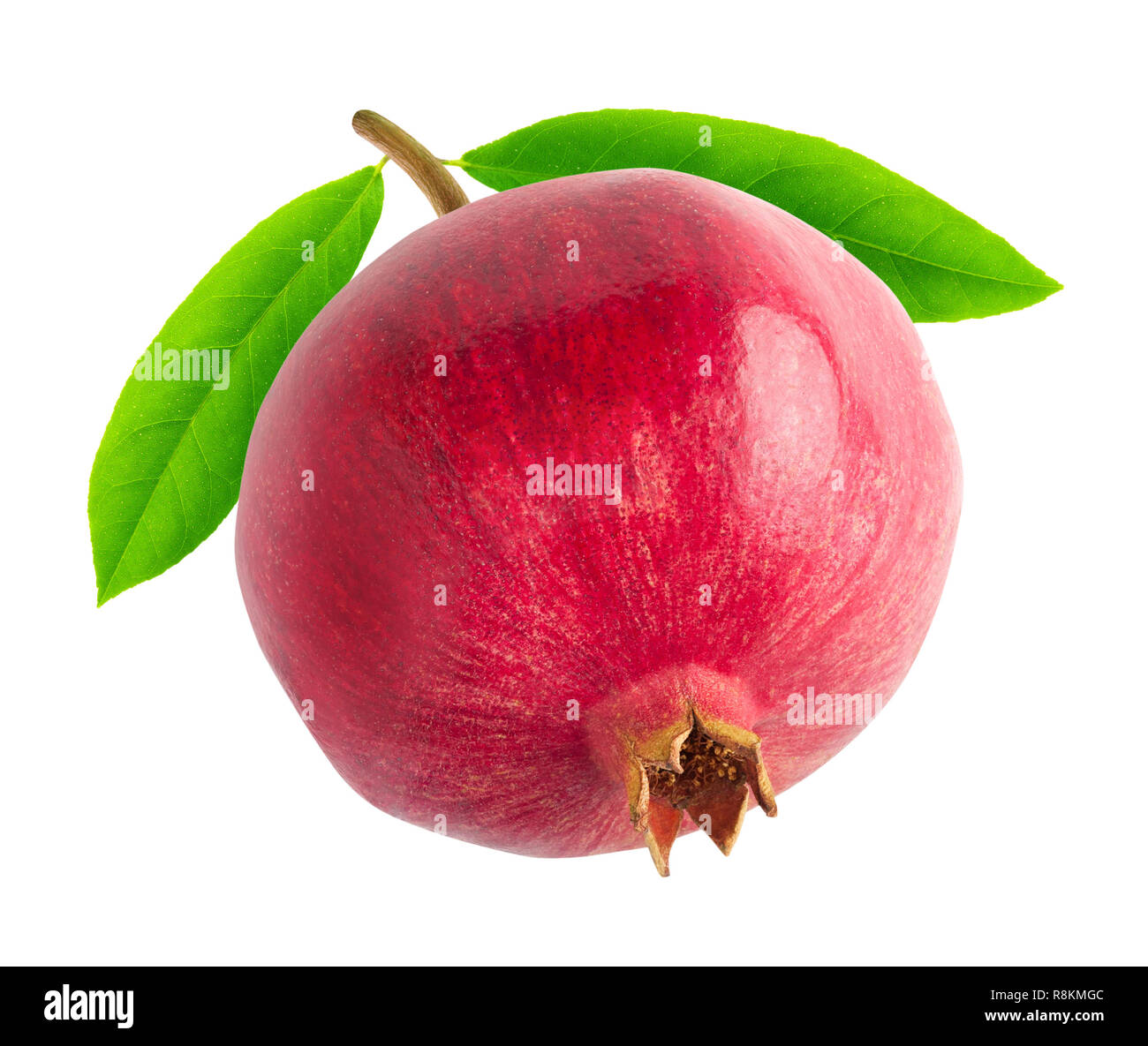 Isolated pomegranate. One pomegranate fruit on a branch with leaves isolated on white background with clipping path - Stock Image