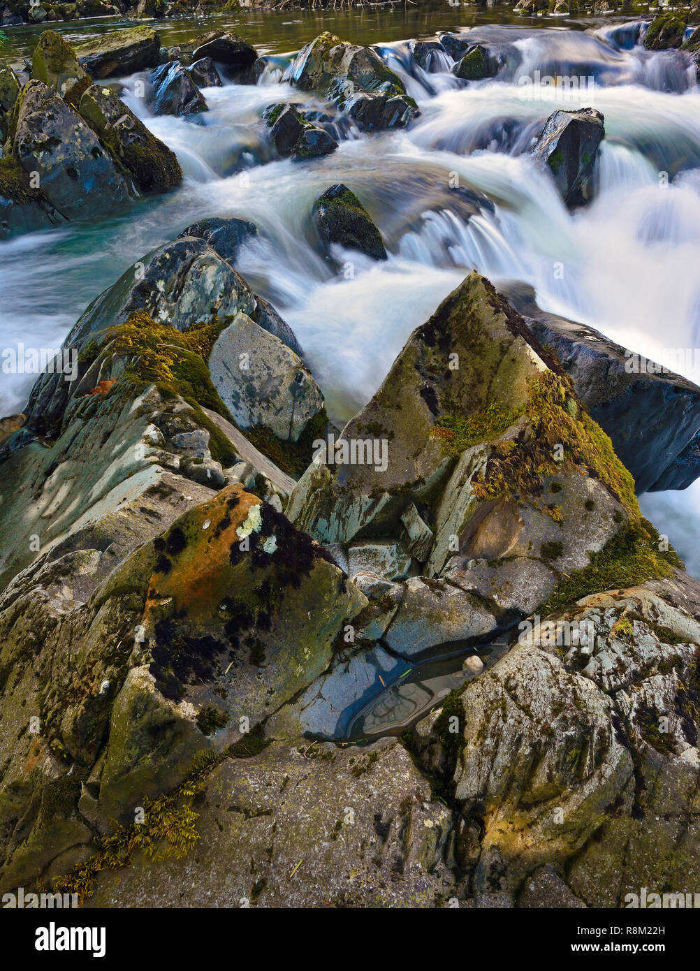 A close-up section of The River Llugwy, Betws y Coed, in the Snowdonia, National Park Wales, UK - Stock Image
