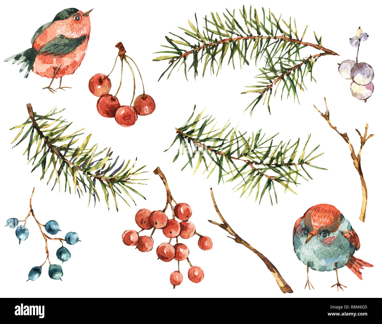 Winter Watercolor Christmas Set Of Tree Branches Birds Berries Natural Hand Painted Illustration Isolated On White Background Holidays Collection Stock Photo Alamy