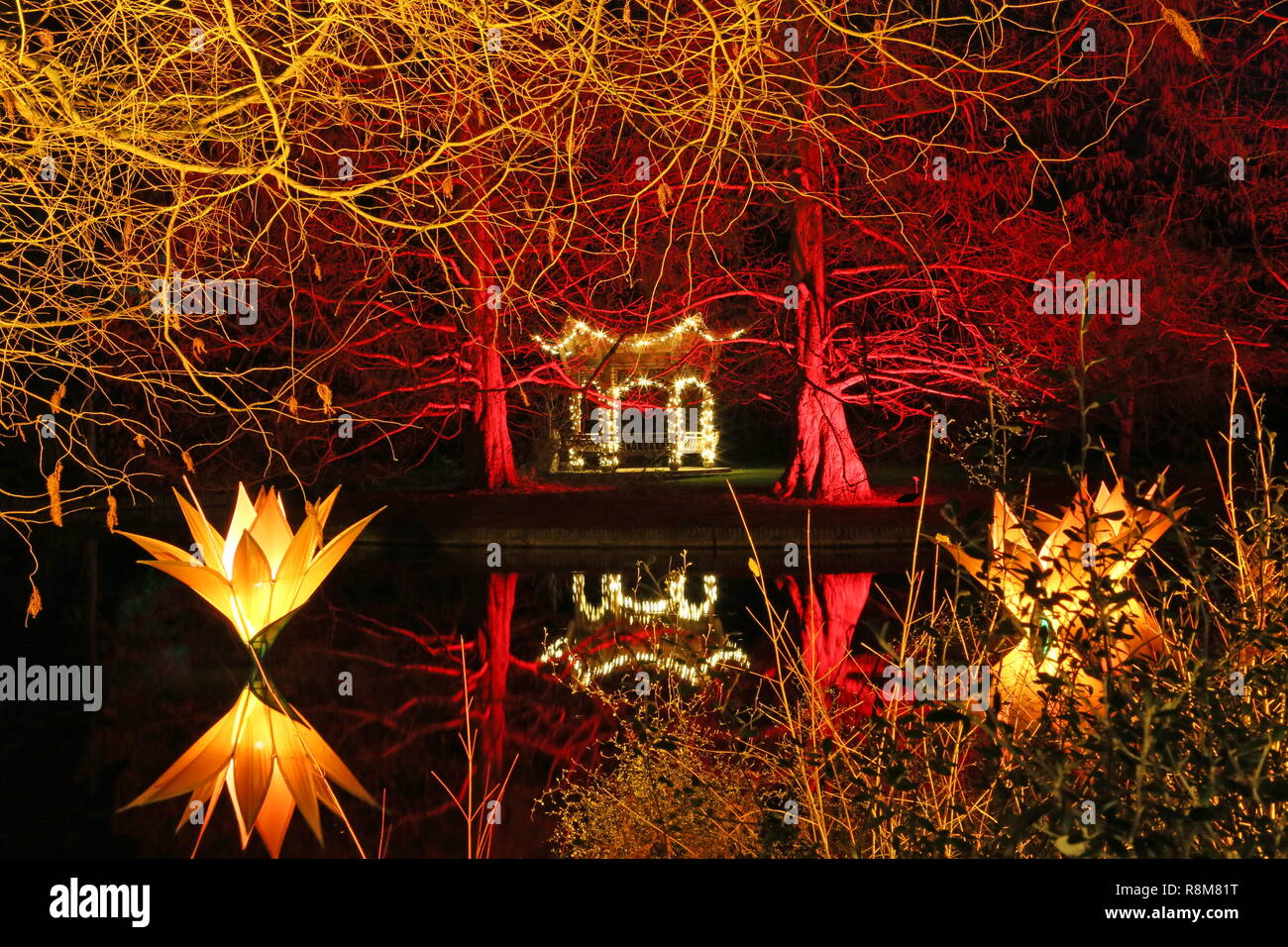 Christmas Glow 2018, Seven Acres lake and Pagoda. RHS Garden Wisley, Woking, Surrey, England, UK, Europe. - Stock Image
