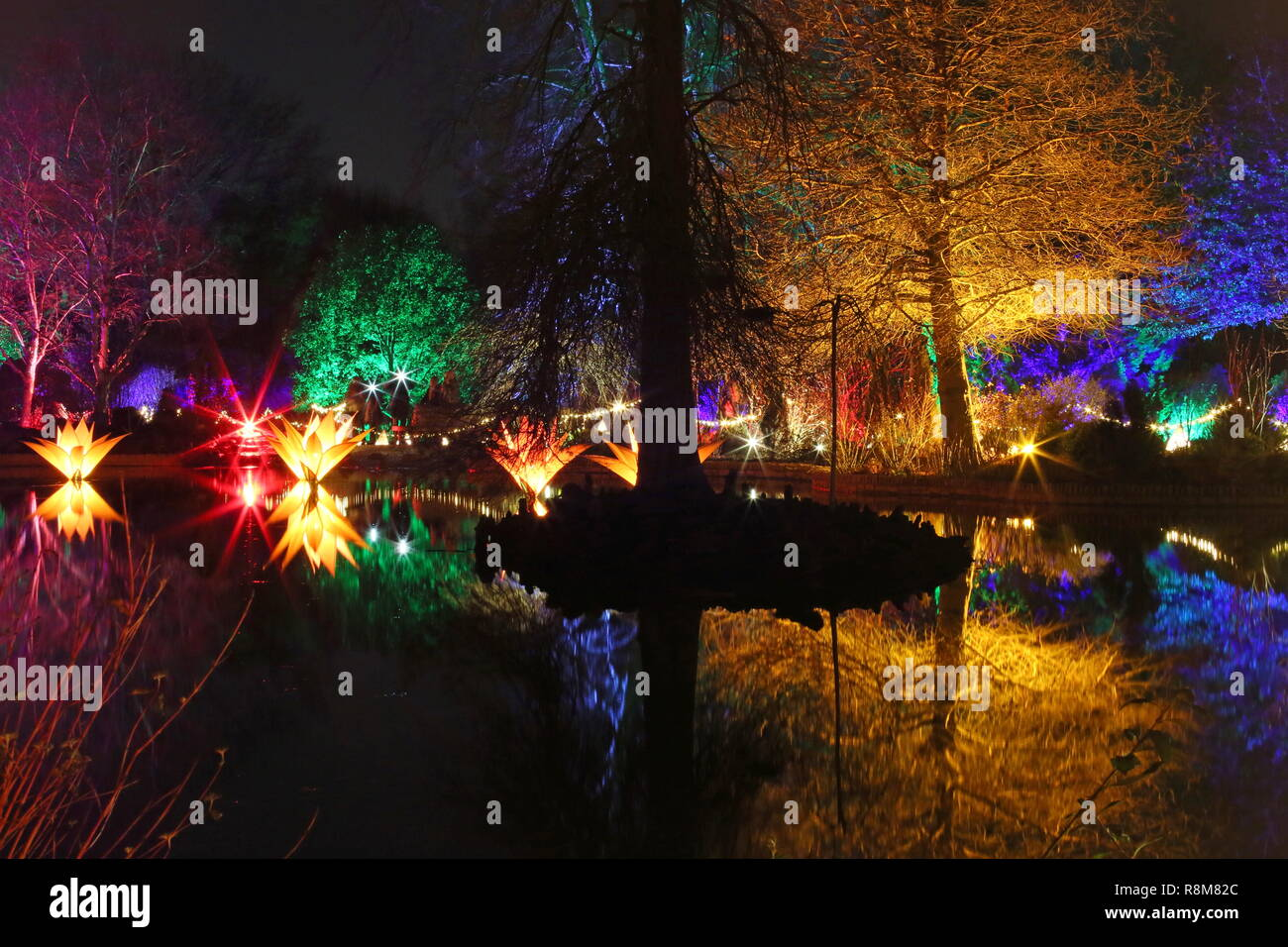 Christmas Glow 2018, Seven Acres lake. RHS Garden Wisley, Woking, Surrey, England, UK, Europe. - Stock Image