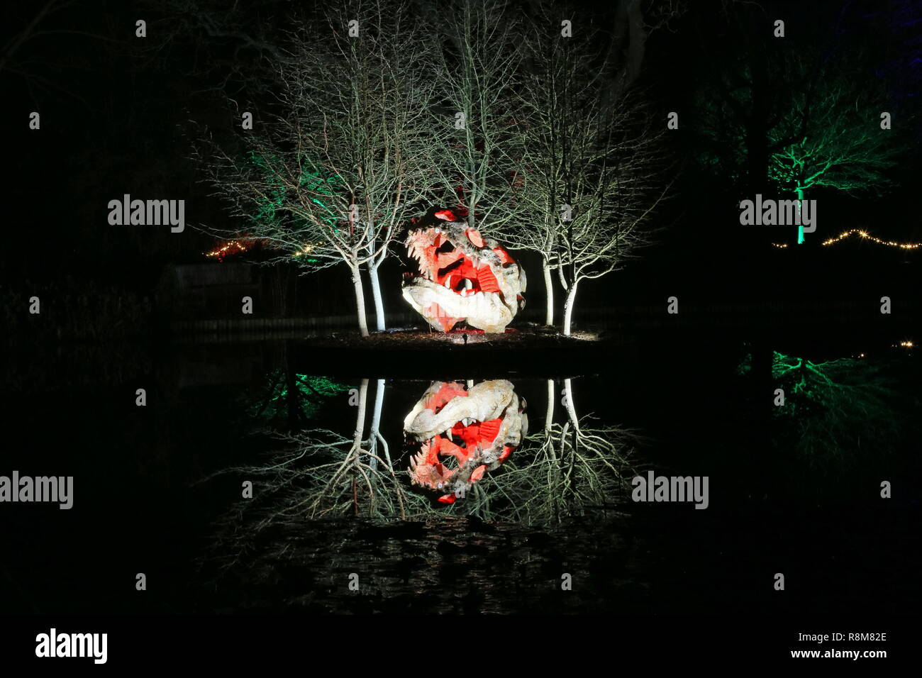 Christmas Glow 2018, Seven Acres lake and dinosaur skull. RHS Garden Wisley, Woking, Surrey, England, UK, Europe. - Stock Image