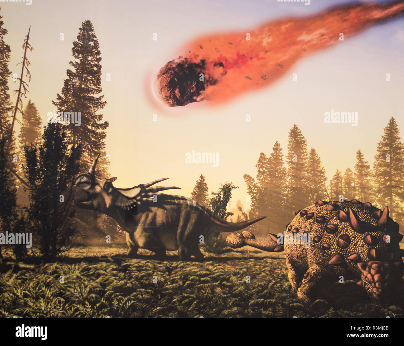 Mural at the Museo de Ciencias del Crater in Yucatan, depicting the asteroid which impacted into Chicxulub, leading to the extinction of dinosaurs. - Stock Image