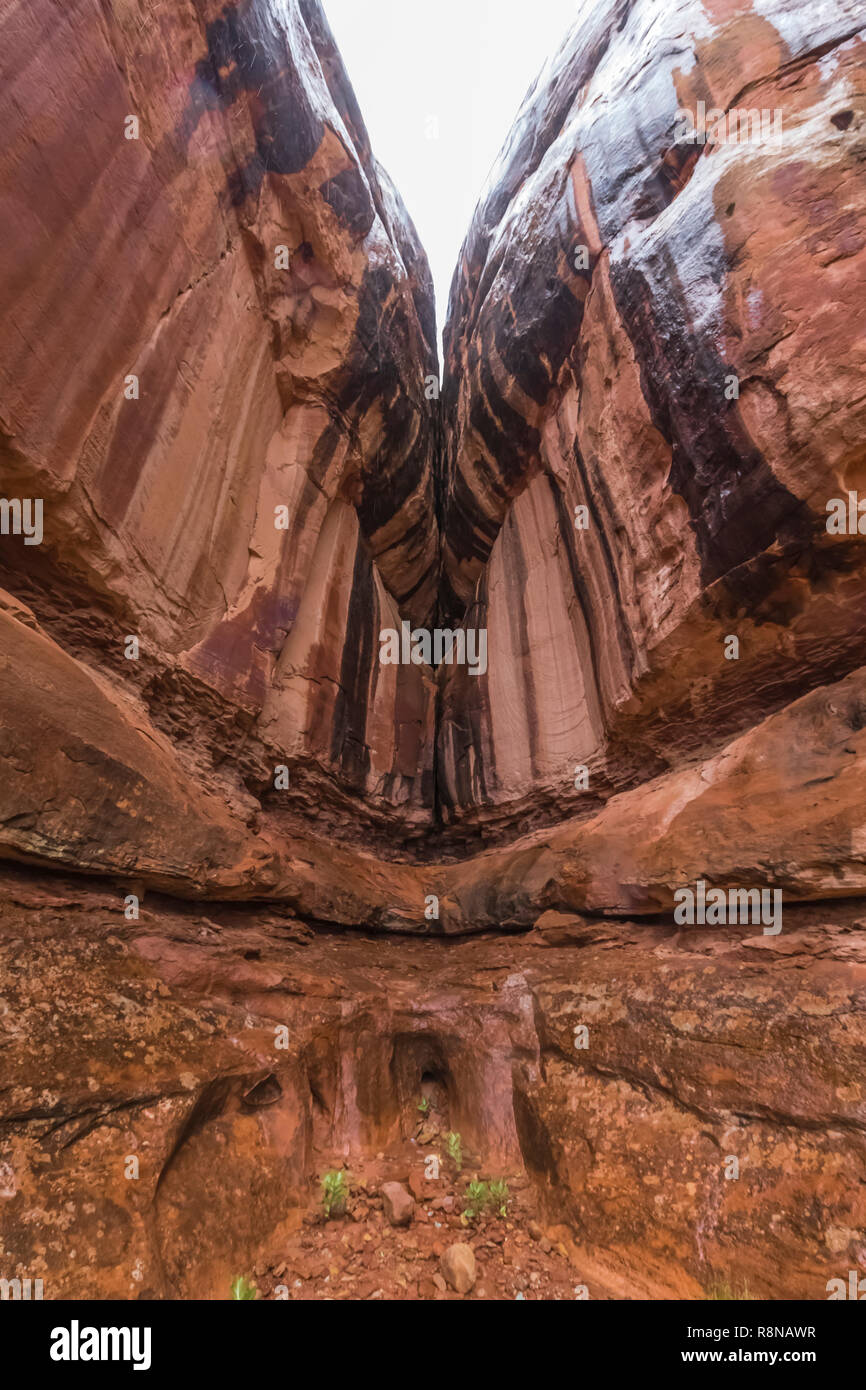 Rainy autumn day with sandstone and desert varnish glistening in the wetness, along the Chesler Park Loop Trail in the Needles District of Canyonlands - Stock Image