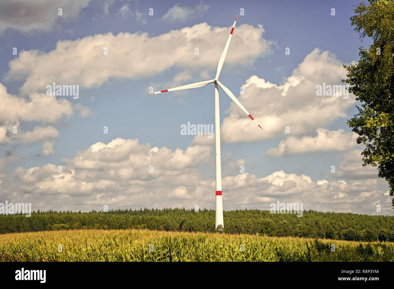 Eco power, green technology concept. Turbine on field on cloudy blue sky. Alternative energy source. Global warming, climate change. Wind farm in Lower Saxony, Germany. - Stock Image