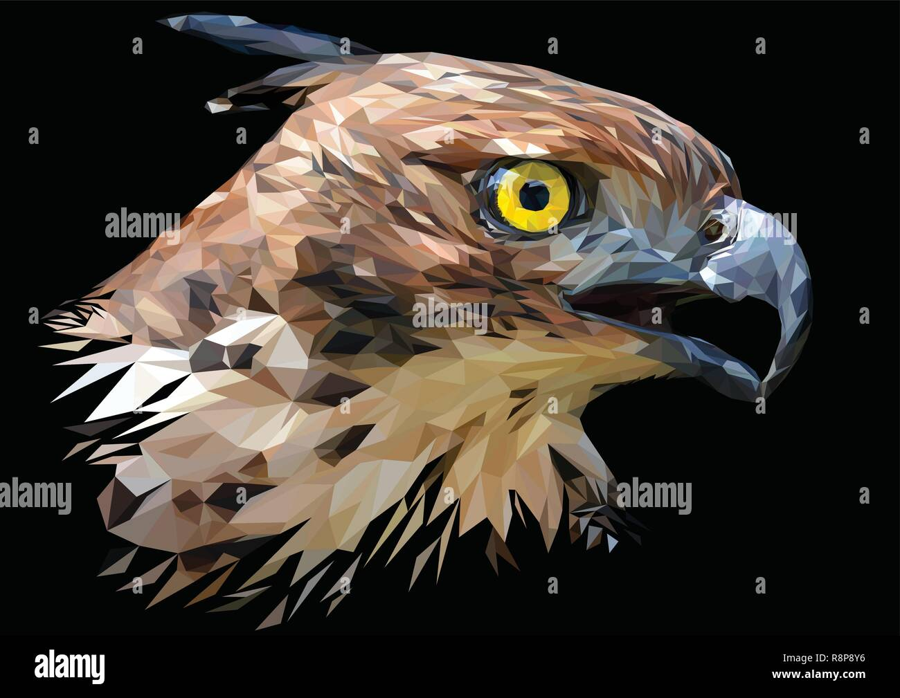 Illustration polygonal drawing  Head focus of the Changeable Hawk Eagle. - Stock Vector