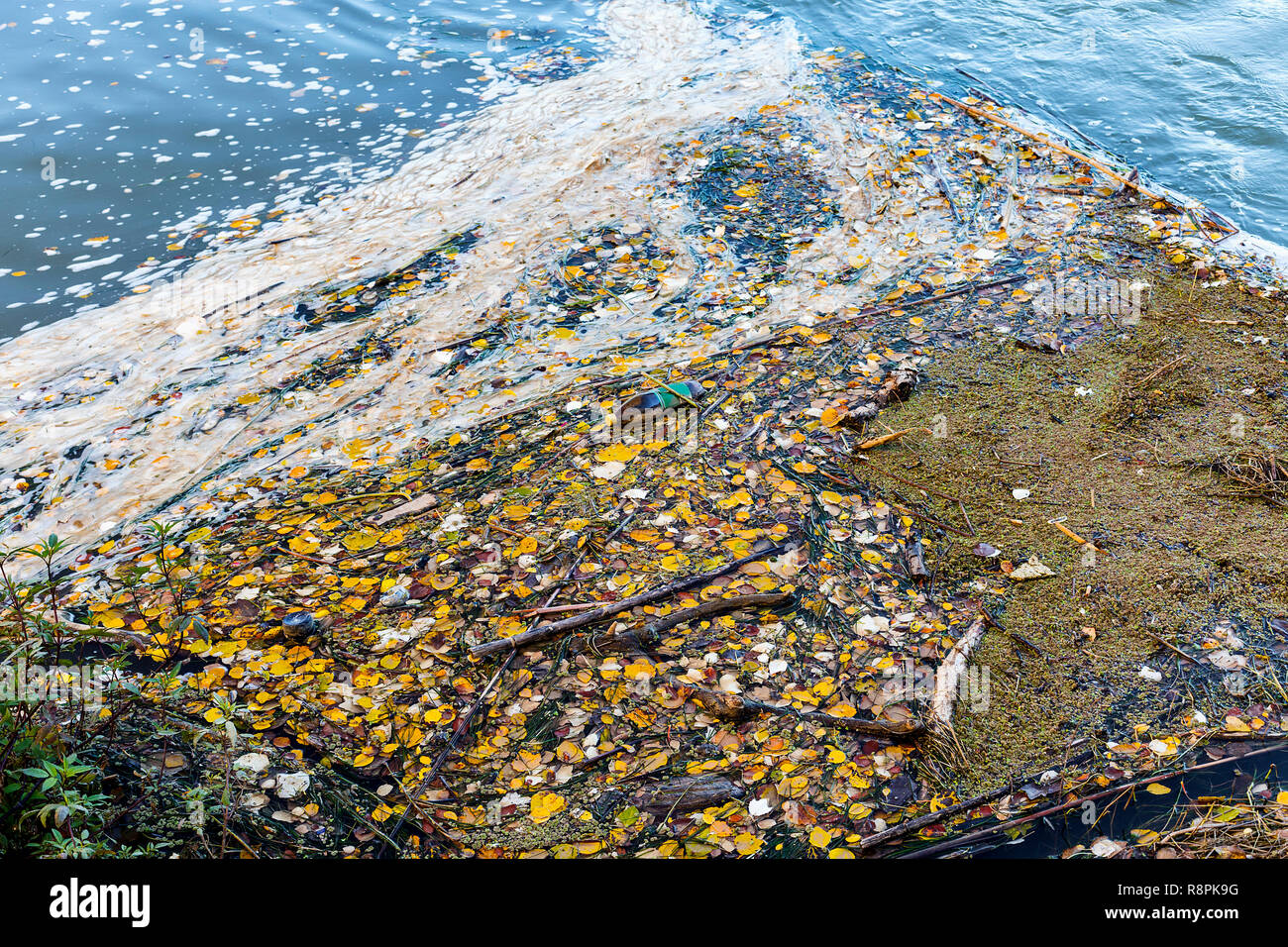 background of bottle and rubbish floating on water in riveside. River pollution - Stock Image