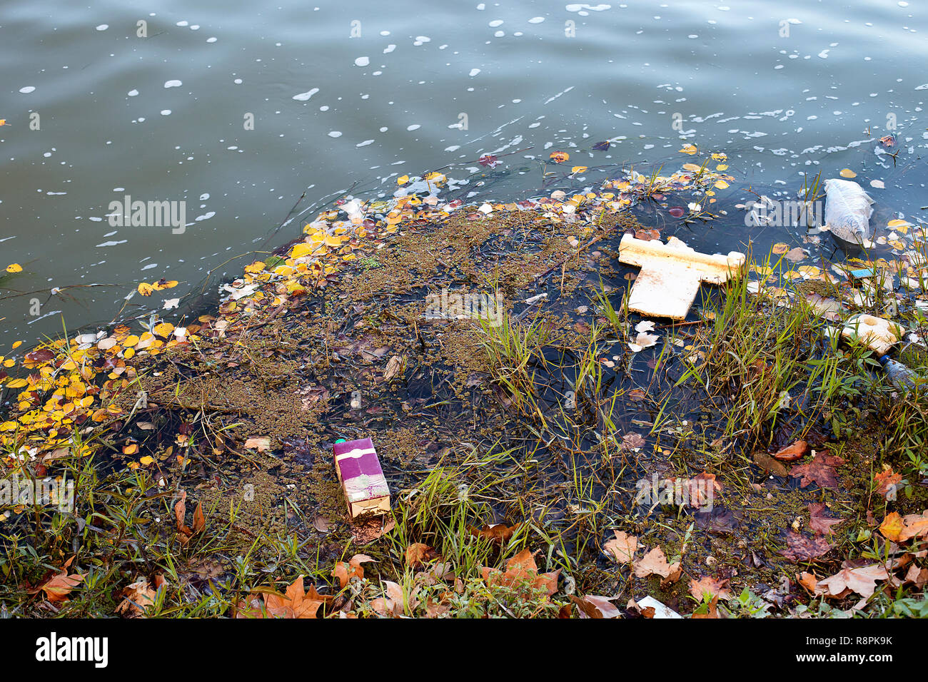 plastic and ribbish floating on water.River pollution - Stock Image