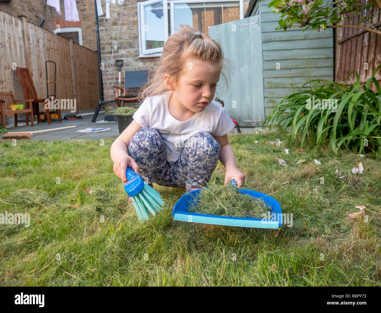 Three year old girl sweeping up cut grass in the back garden, London, UK - Stock Image