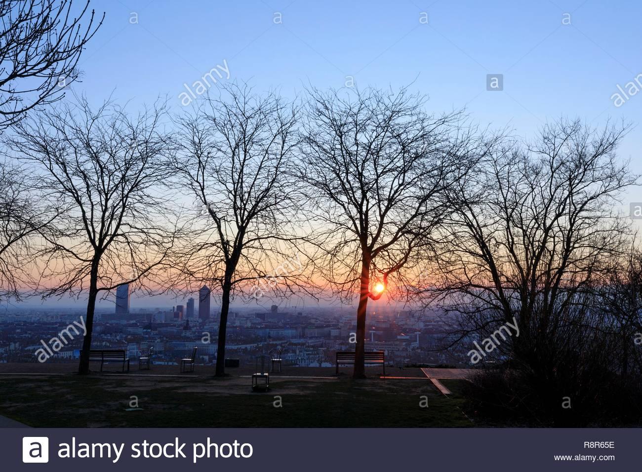 France, Rhône, Lyon, 5th arrondissement, Old Lyon district, Jardin des Curiosités - Stock Image