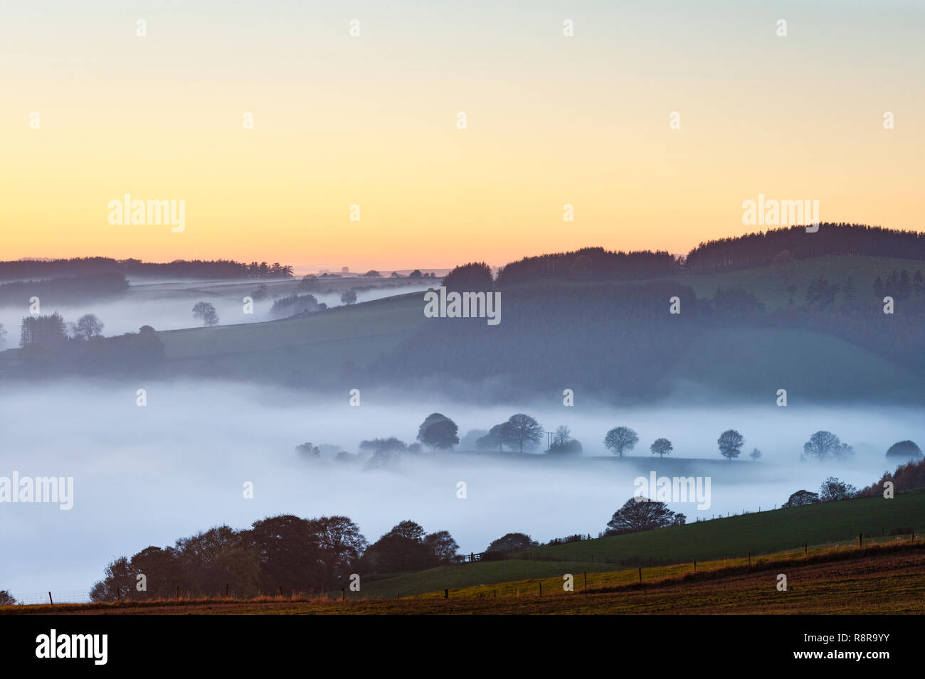 On the border between England and Wales near Knighton, Powys, UK. Evening view west from Stonewall Hill showing the valleys filled with thick fog Stock Photo