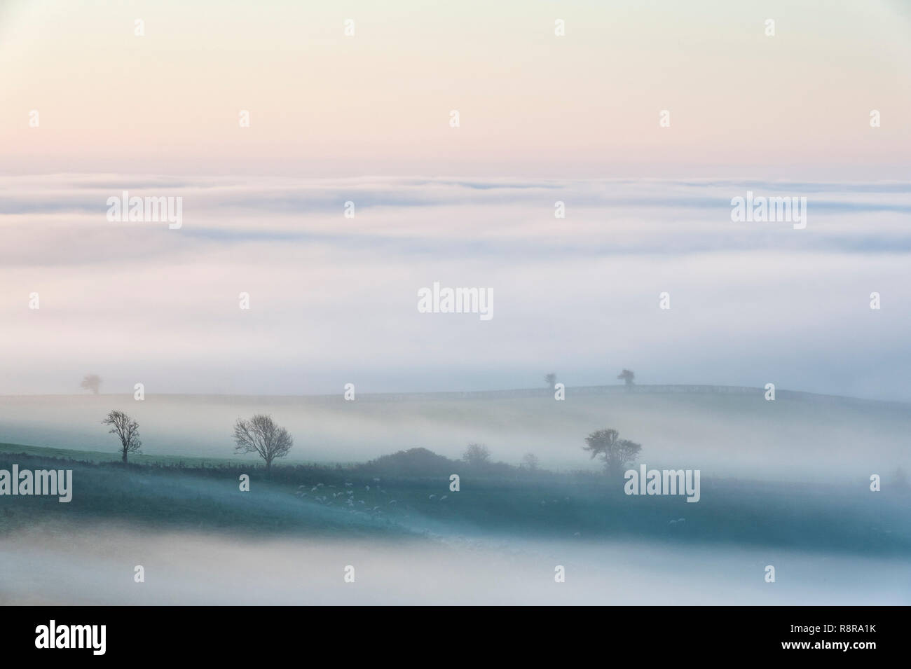On the border between England and Wales near Knighton, Powys, UK. Early morning view over Herefordshire showing the valleys filled with thick fog Stock Photo
