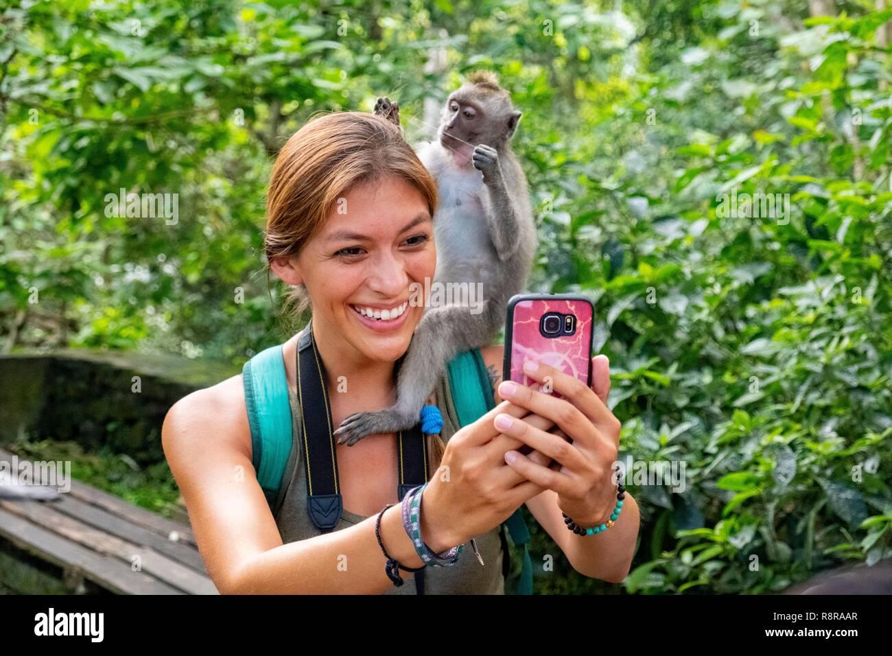 Indonesia, Bali, Center, Ubud, Monkey Forest (monkey forest) - Stock Image