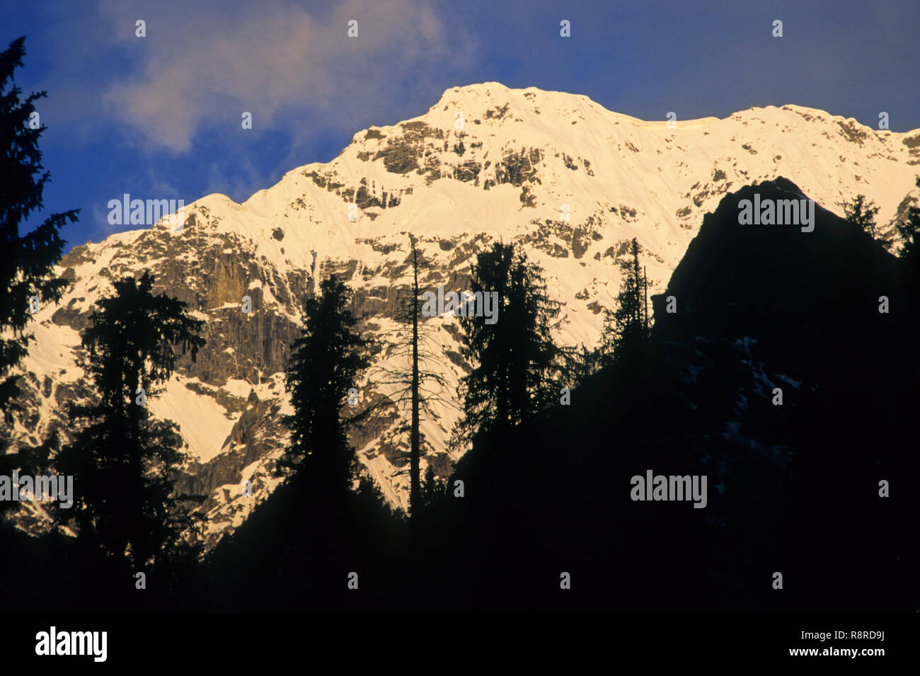 Mountain peaks at Solang, Manali, Himachal Pradesh, India - Stock Image