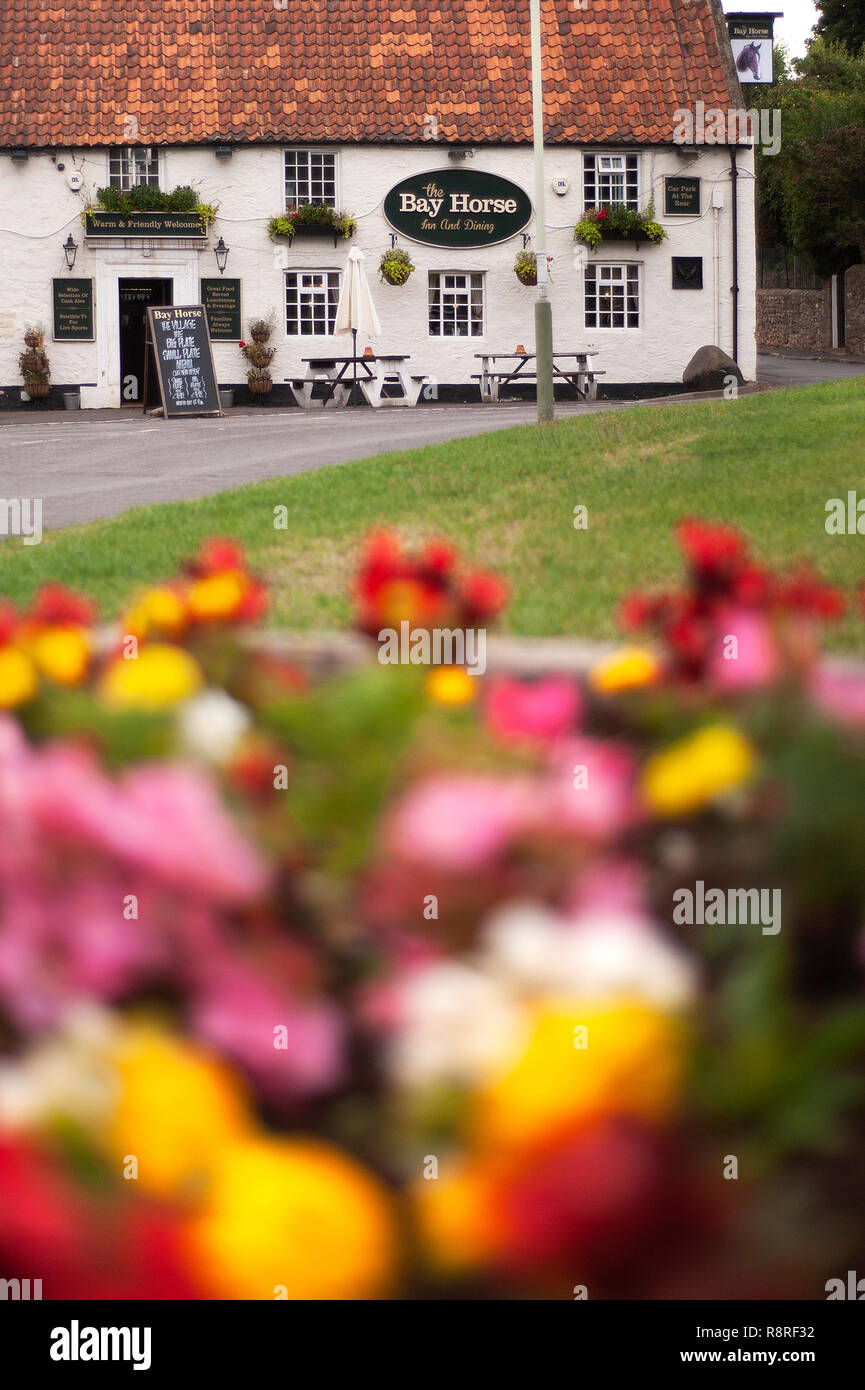 The Bay Horse pub, Heighington, County Durham - Stock Image