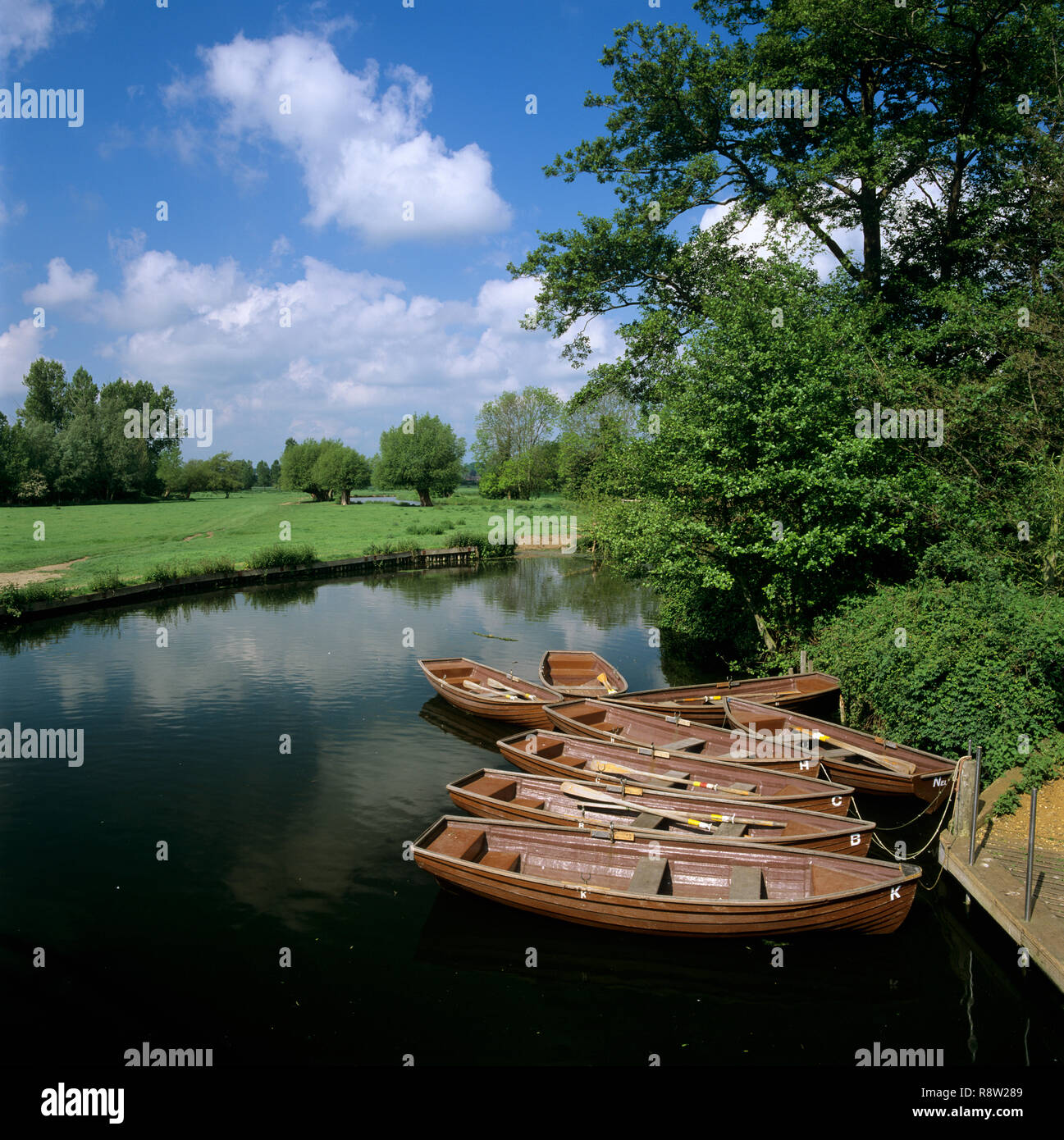 Rowing boats on River Stour near Flatford Mill, East Bergholt, Suffolk, England, United Kingdom, Europe - Stock Image