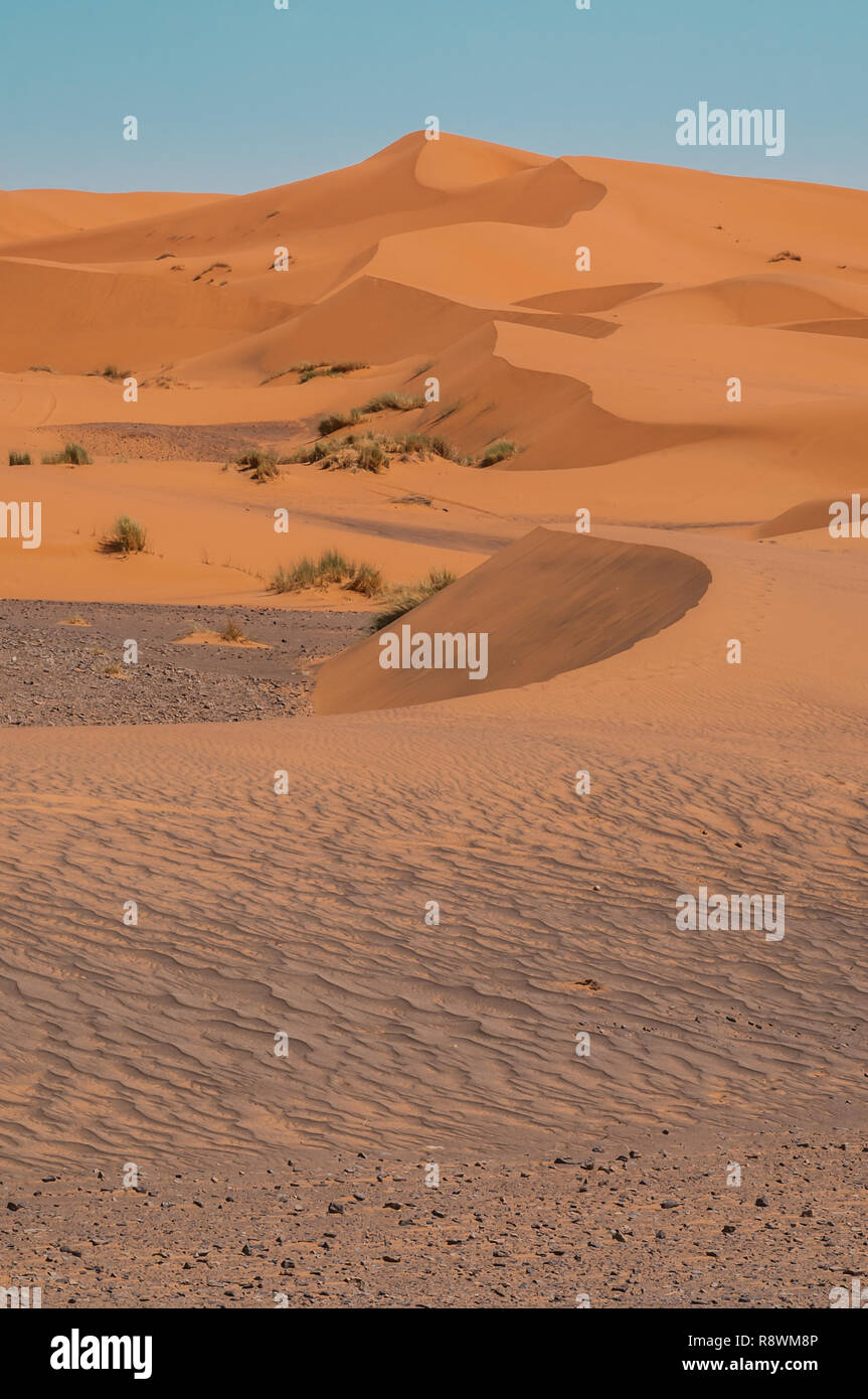A line of orange sand dunes rise up from the rocky desert floor at the edge Erg Chebbi in Morocco - Stock Image