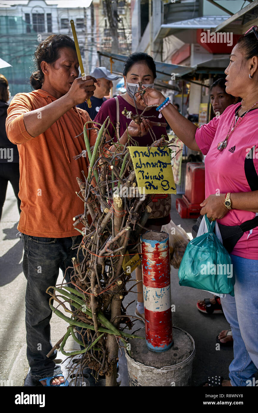 Good luck tree. Thailand street vendor selling and customers buying cuts from a specific tree deemed to bring good luck - Stock Image