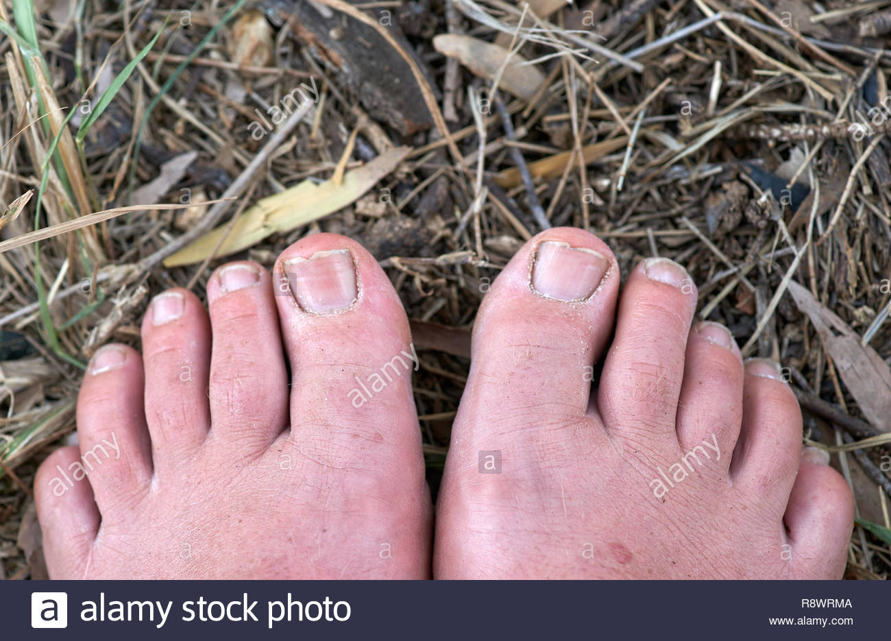 An image detailing a pair of middle-aged, male - bare and sandy - feet on the ground; just the forefeet, with organic matter underneath. - Stock Image