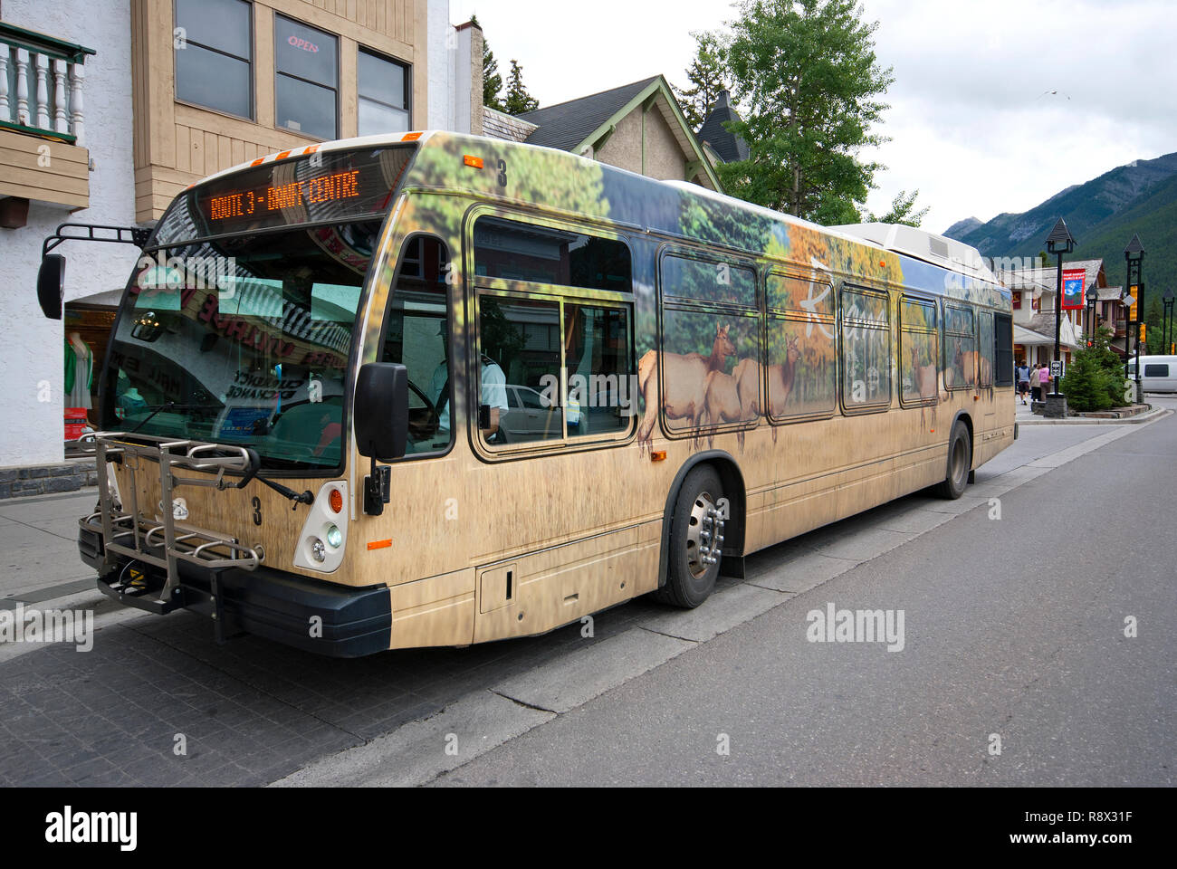 Roam bus with pictures of wildlife in Banff village, Banff National Park, Alberta, Canada - Stock Image