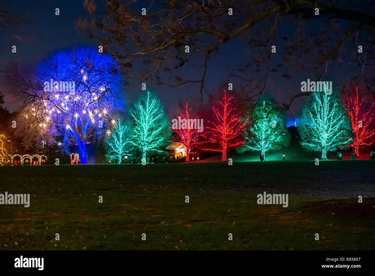 Longwood Gardens Christmas.Night View Of Christmas Lights Decorations Longwood