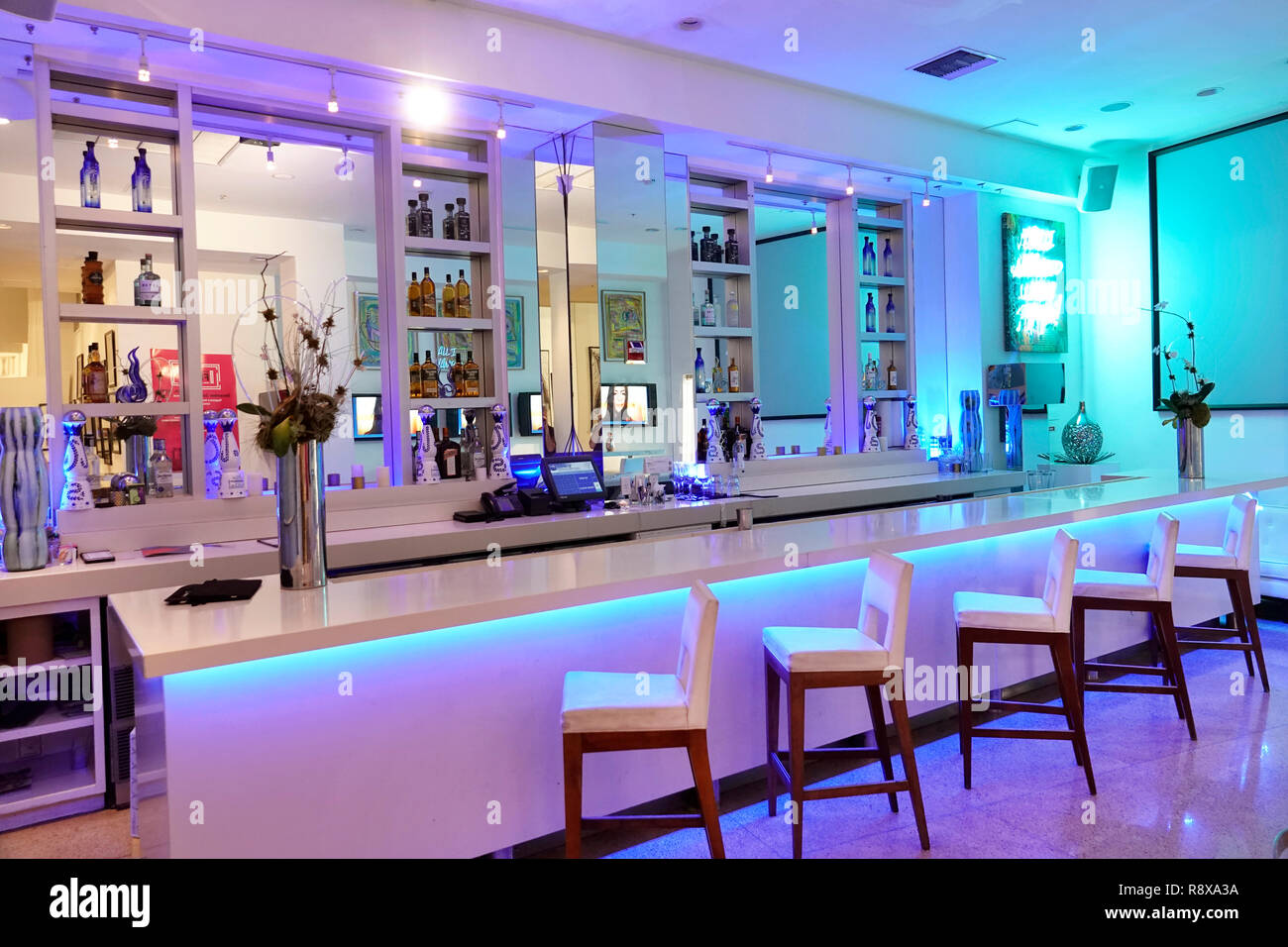 Miami Beach Florida Collins Avenue Sagamore hotel lounge bar - Stock Image