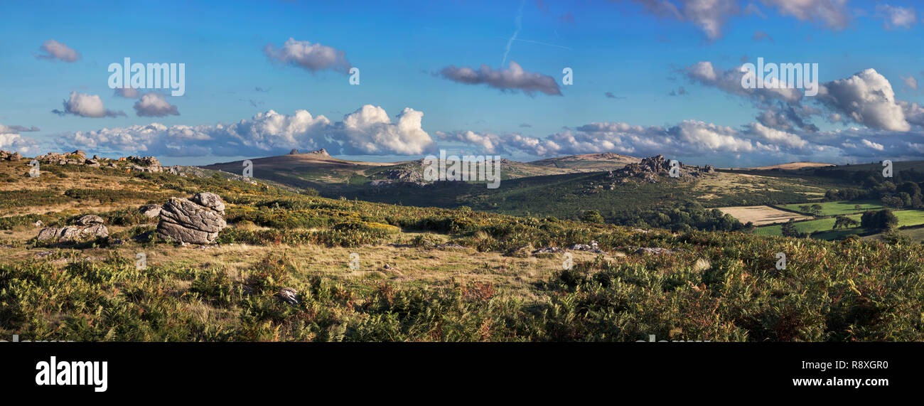 View from Hayne Down in Dartmoor National Park towards Hound Tor and Haytor - Stock Image