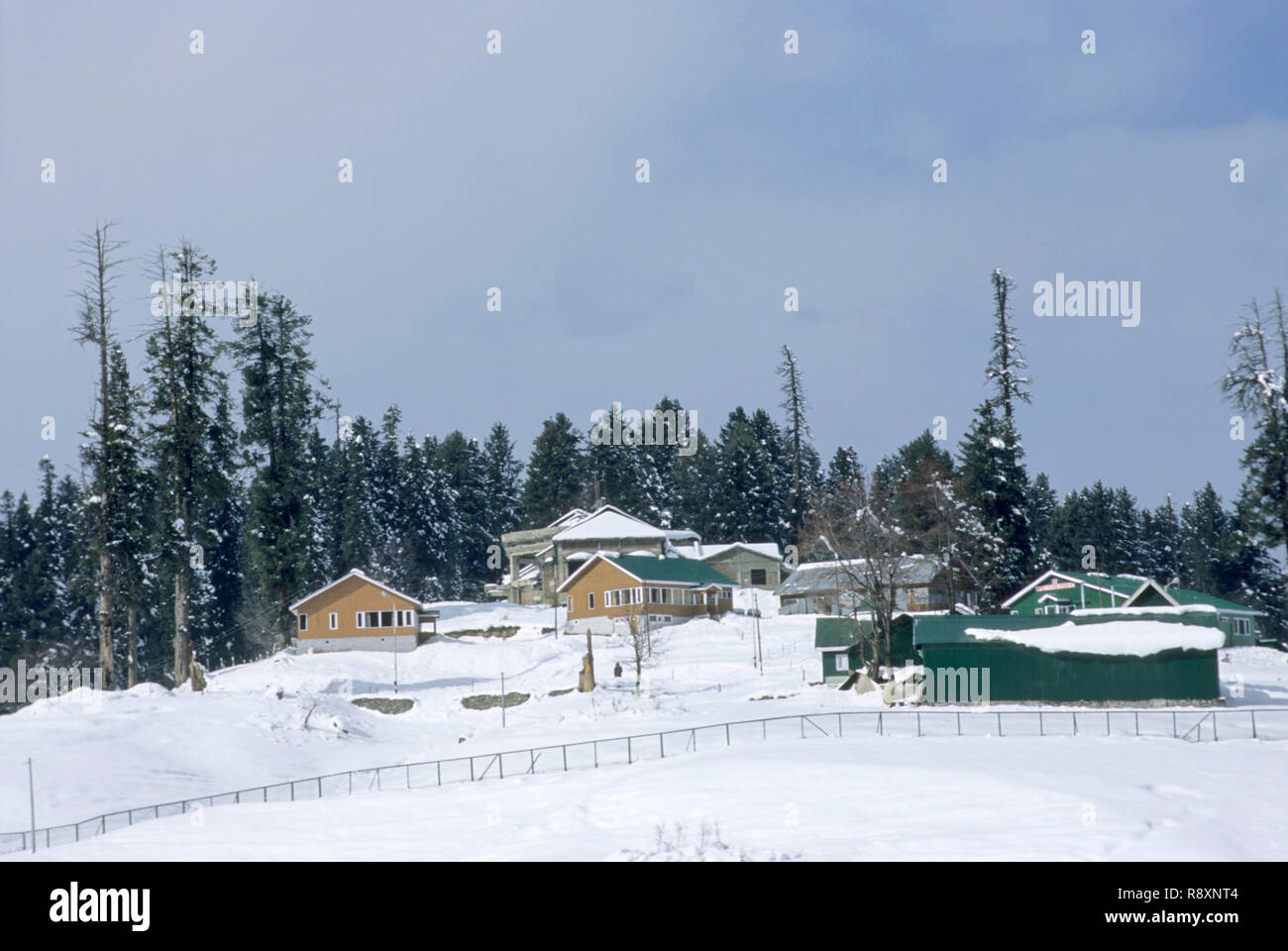 winter season in gulmarg, jammu and kashmir, india Stock
