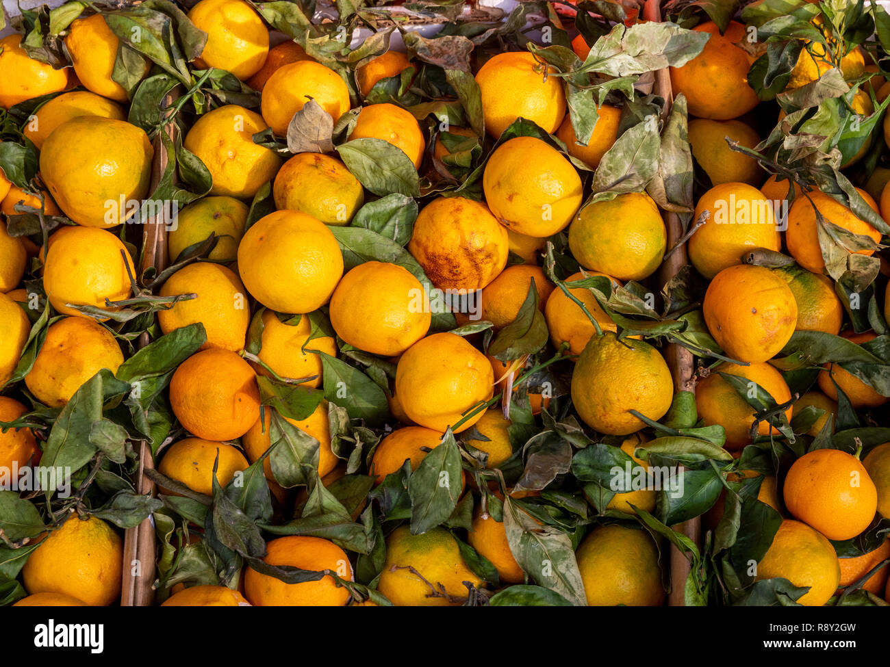 Oranges for sale, some bruised and over-ripe, at a market in San Francisco, California. - Stock Image