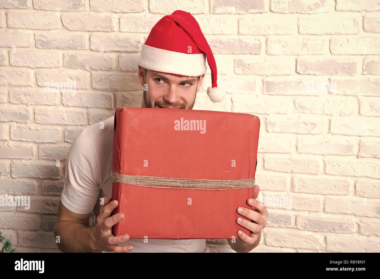 Man with cunning face in santa hat hold red wrapped christmas present box on white brick wall. Gift giving and exchange. Boxing day concept. - Stock Image