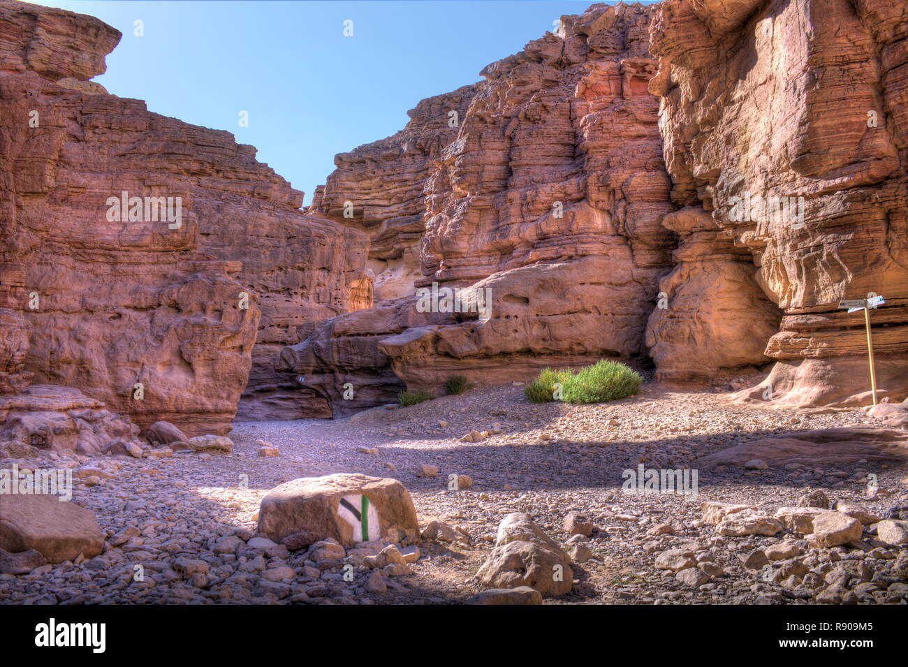 the right (green) path leads right through the impressive red canyon in Eilat, Israel - Stock Image