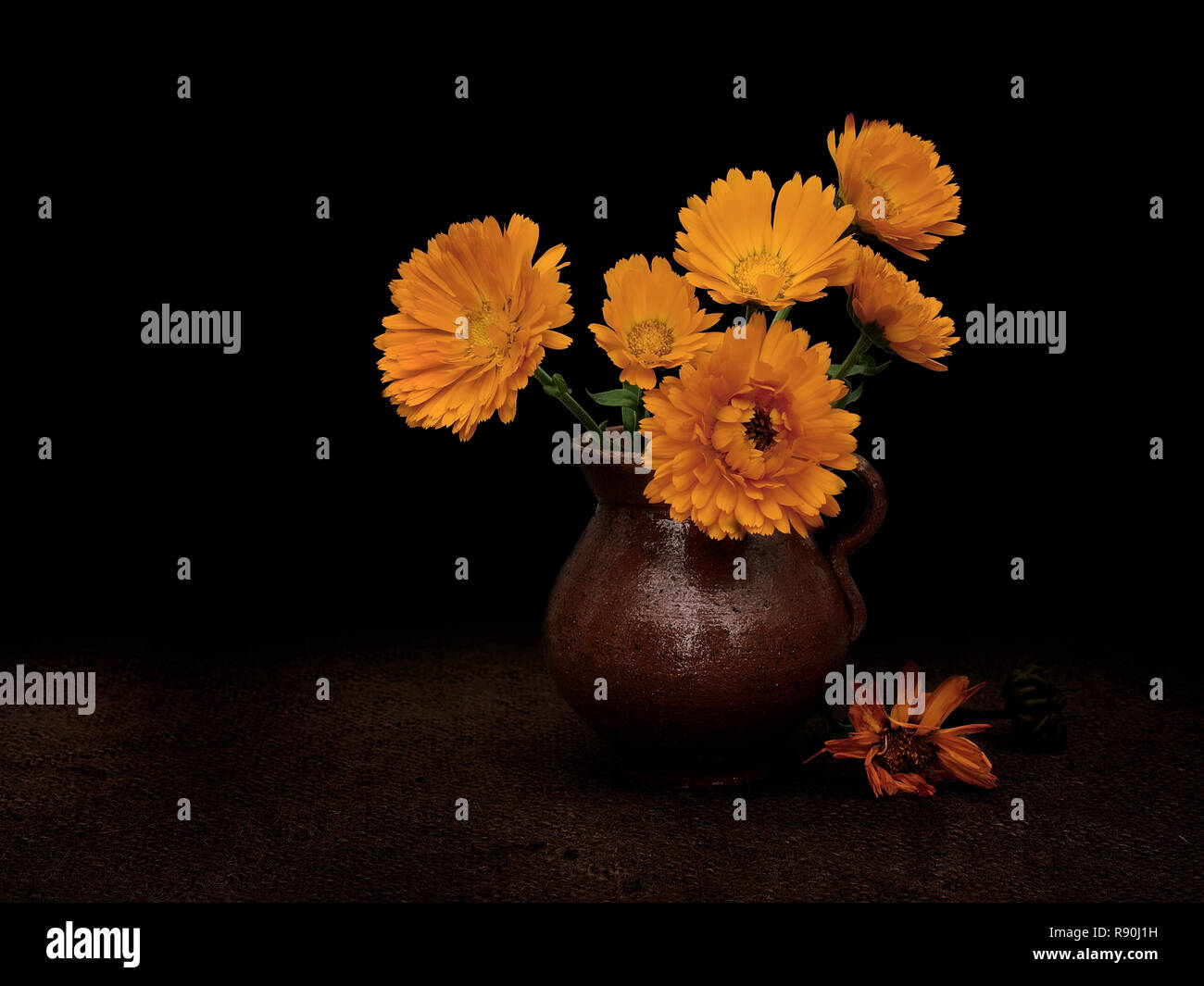Fading marigolds, time concept, light painting still life. - Stock Image