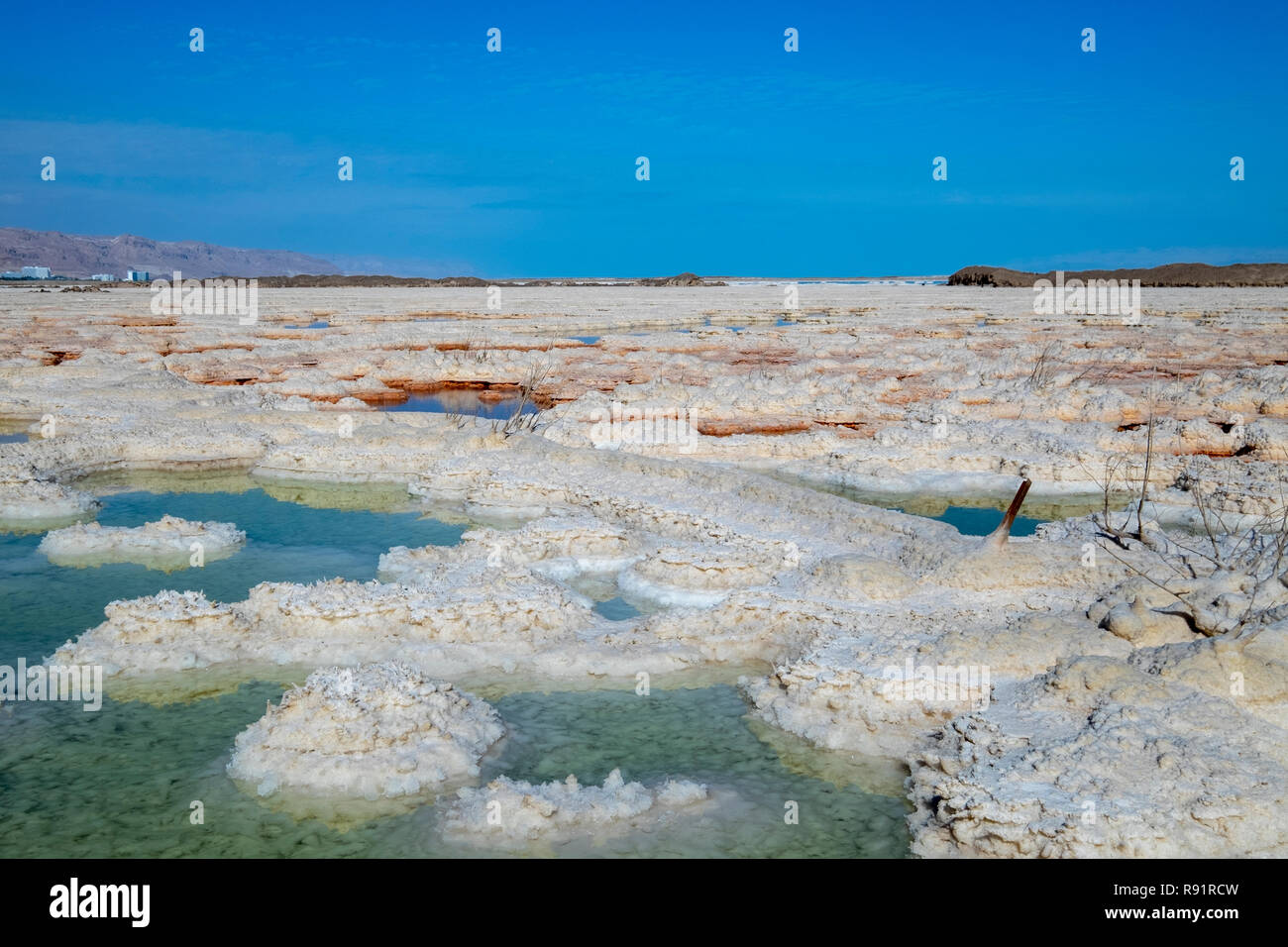 Israel, Dead Sea, salt crystalization caused by water evaporation Stock Photo