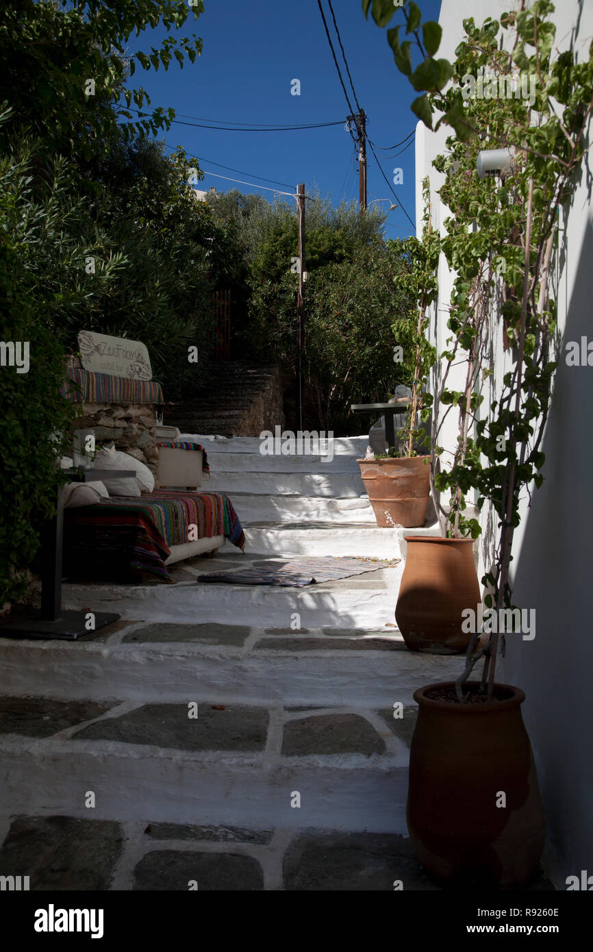 potted plants and steps vourkari kea cyclades greece - Stock Image