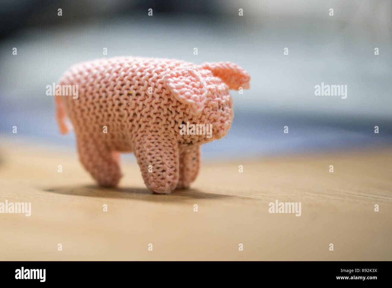 """Oldenburg, Germany. 18th Dec, 2018. A view of a small piglet called Kohlfietjes. Senior women in a housing project produce these by hand. (to dpa """"From Steckenpferd to Löwenhelm - this is how Niedersachsen markets itself"""" from 19.12.2018) Credit: Mohssen Assanimoghaddam/dpa/Alamy Live News Stock Photo"""