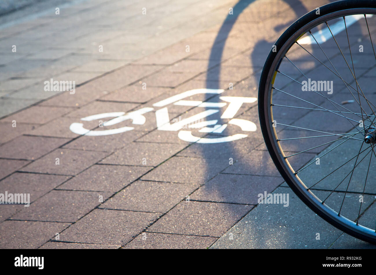 cycle lane with pictogram - Stock Image