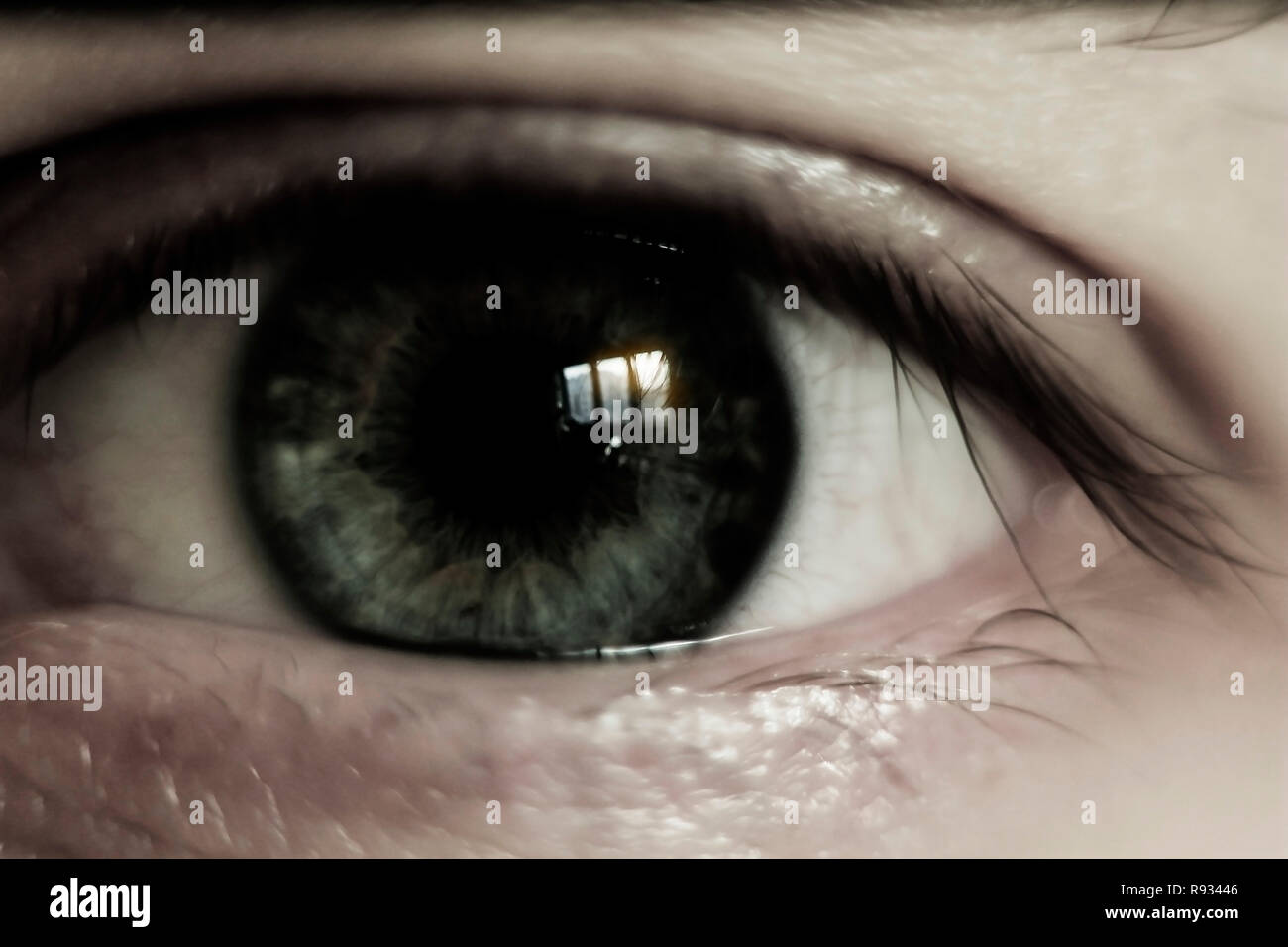 closeup of one eye of a young man - Stock Image