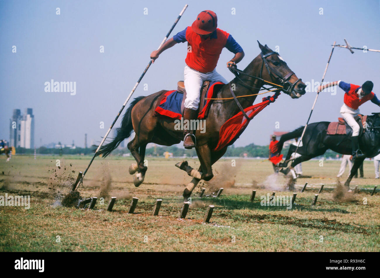 Tent Pegging & Tent Pegging Stock Photo: 229346052 - Alamy
