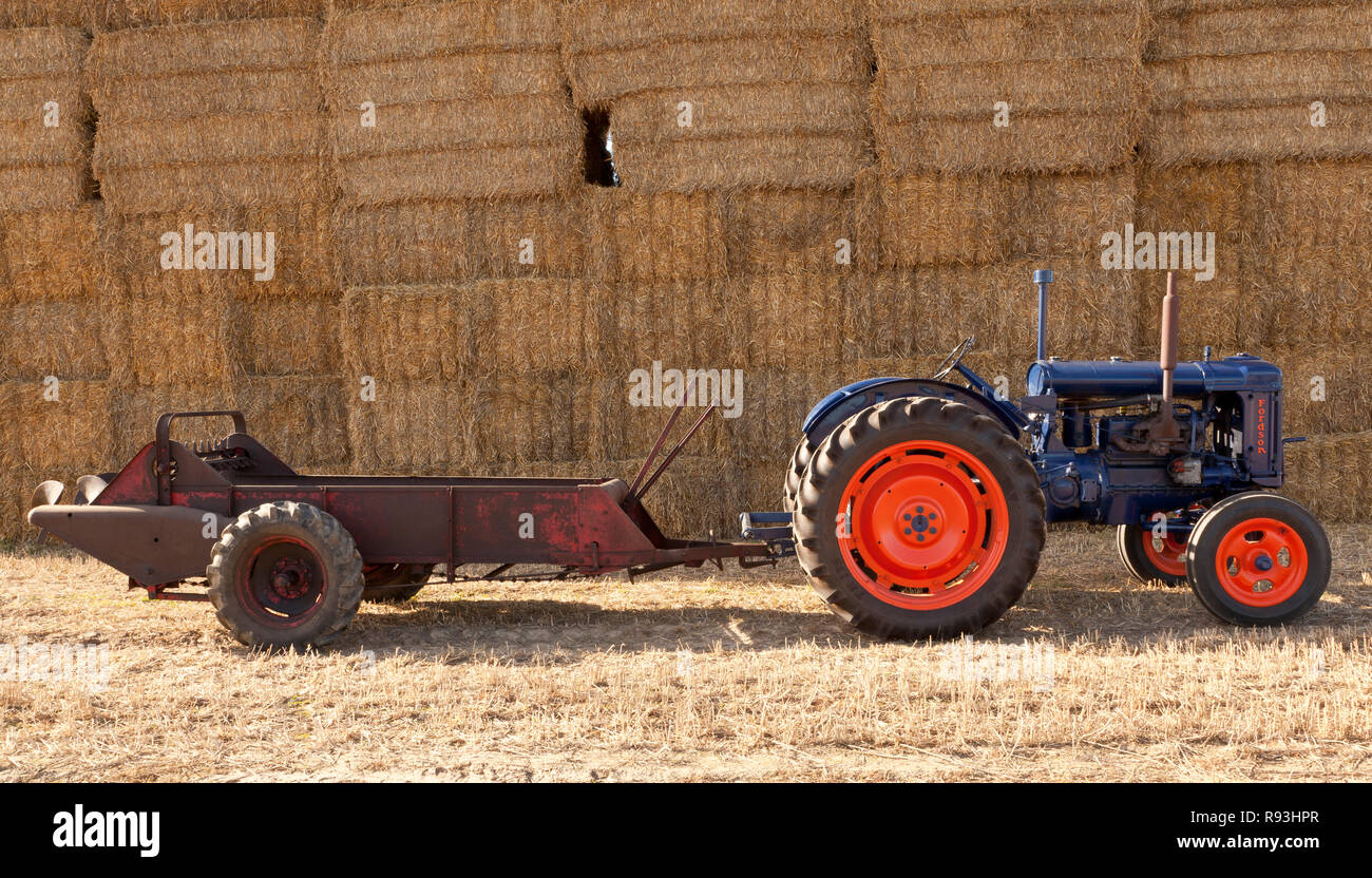 A vintage Fordson tractor towing a muck spreader - Stock Image