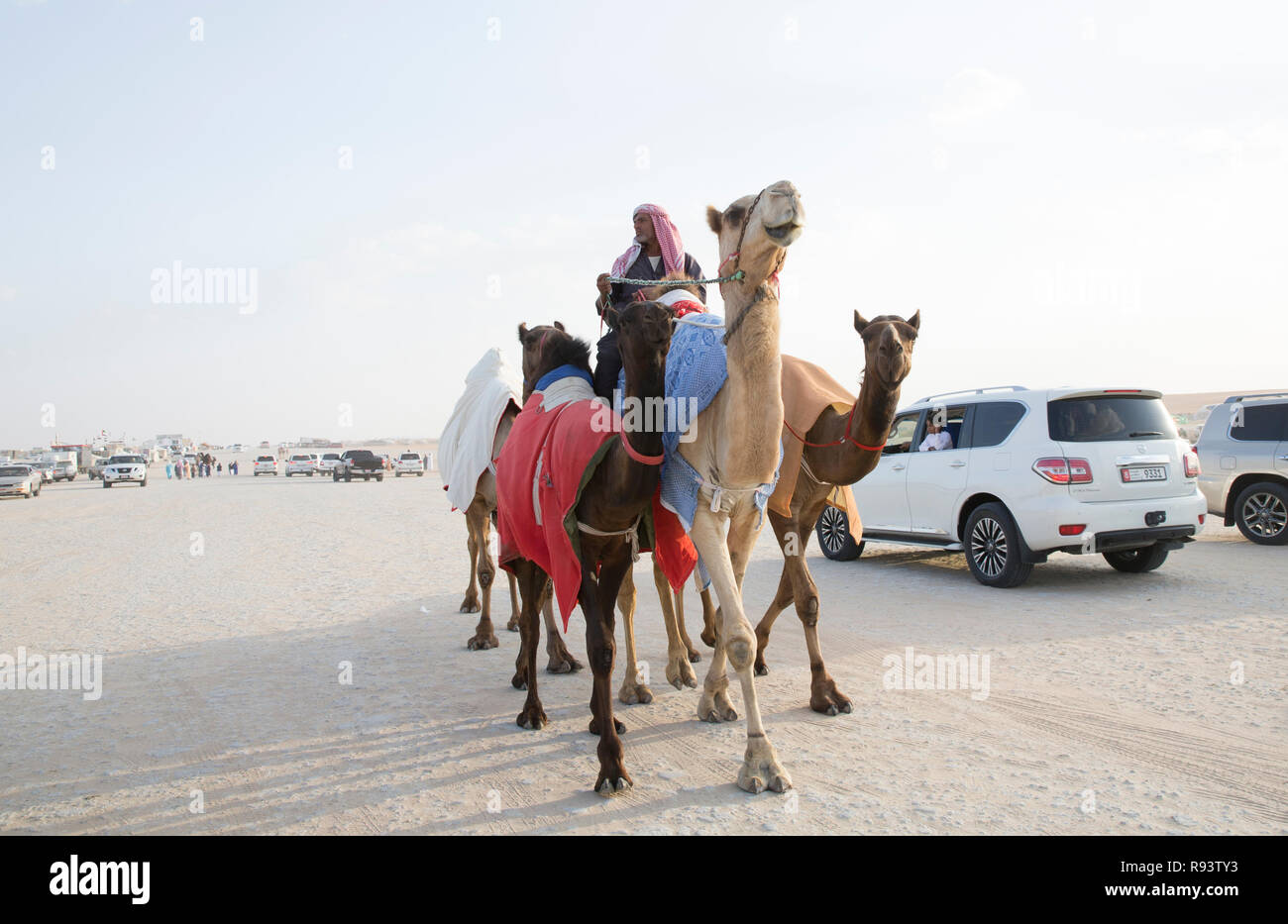 Madinat Zayed, United Arab Emirates, December 15th, 2017: arab man with his camel in a desert - Stock Image