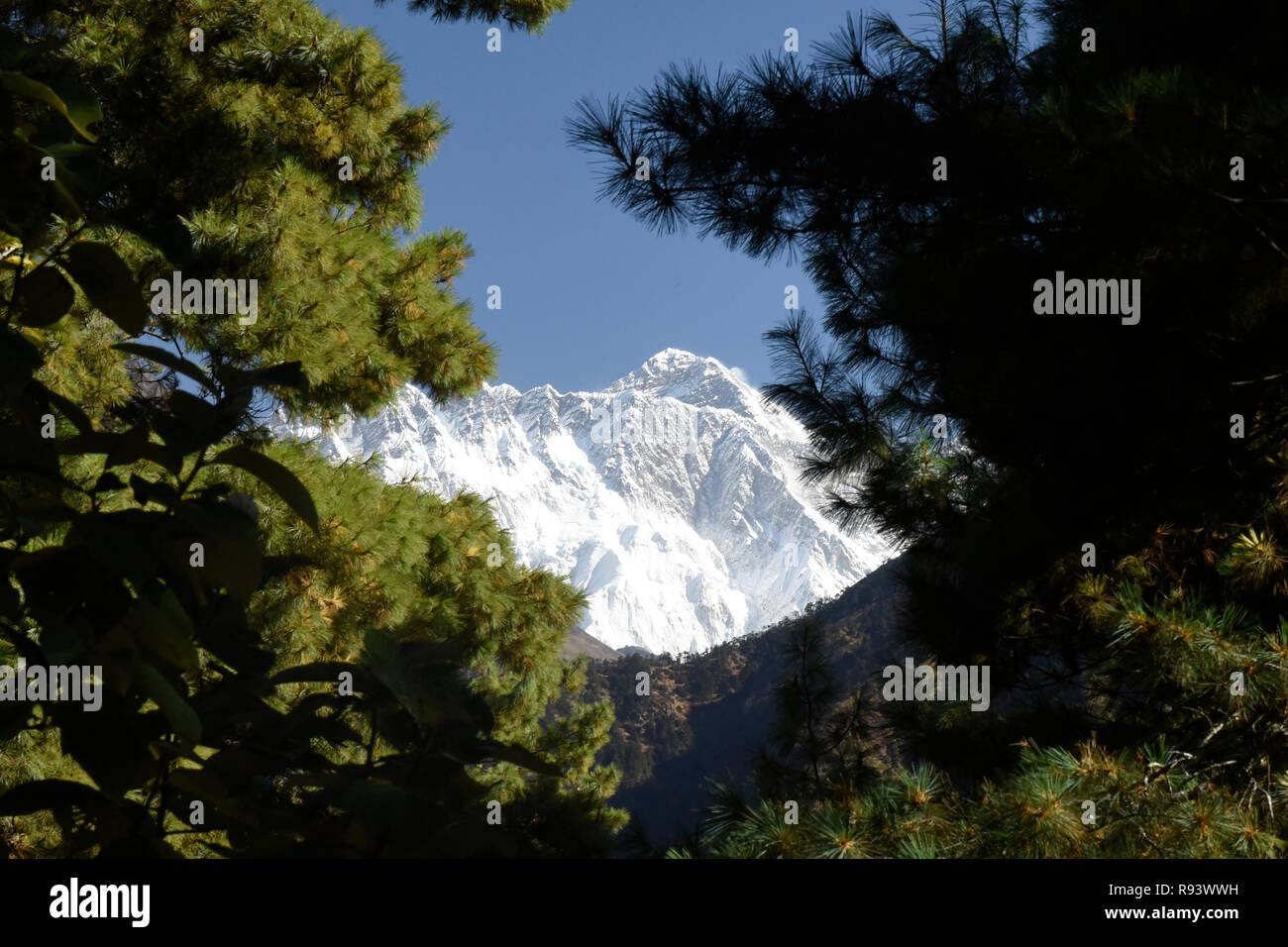 Mount Everest glimpsed through the trees, Khumbu, Nepal - Stock Image