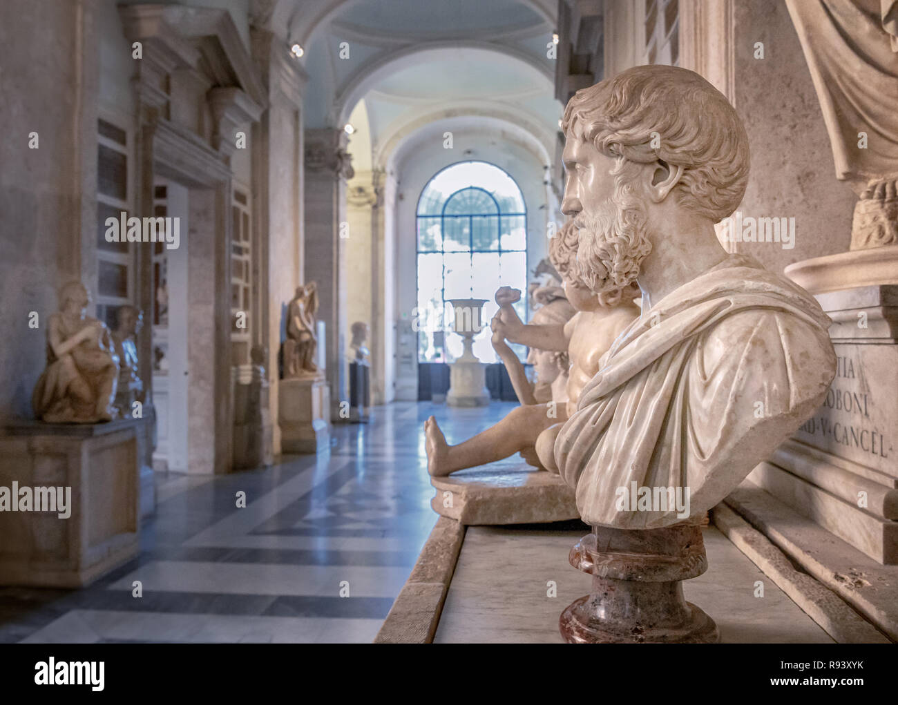 Roman busts, Palazzo Nuovo, The Capitoline Museums, Rome, Lazio, Italy - Stock Image