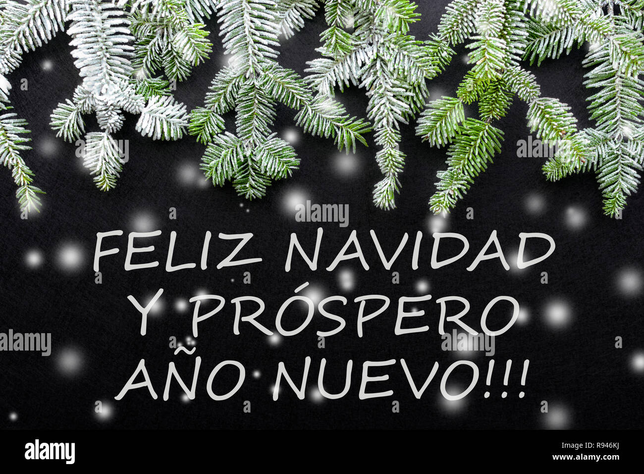 Fir tree and snow on dark background. Greetings Christmas card. Postcard. Christmastime. Red, white and green. 'Feliz Navidad y prospero año nuevo' - Stock Image