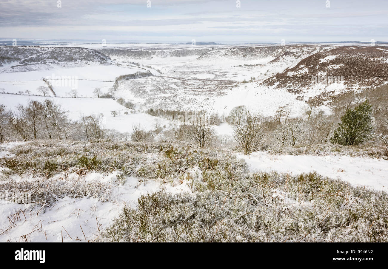 Heavy snow over the Hole of Horcum, a natural depression, in the North York Moors in winter near Goathland, Yorkshire, UK. - Stock Image