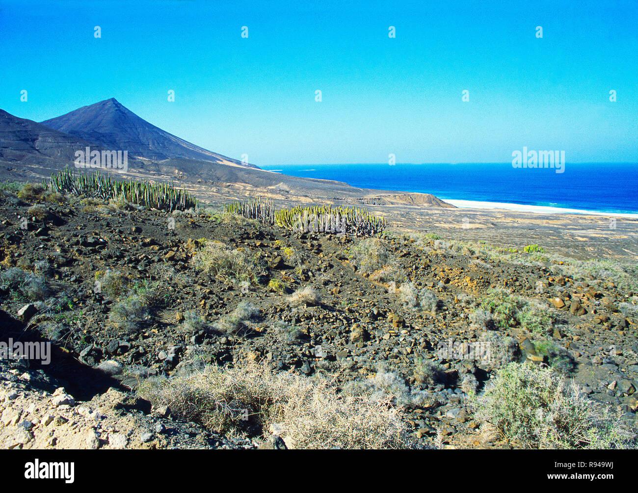 Jandia Nature Reserve. Fuerteventura, Canary Islands, Spain. Stock Photo