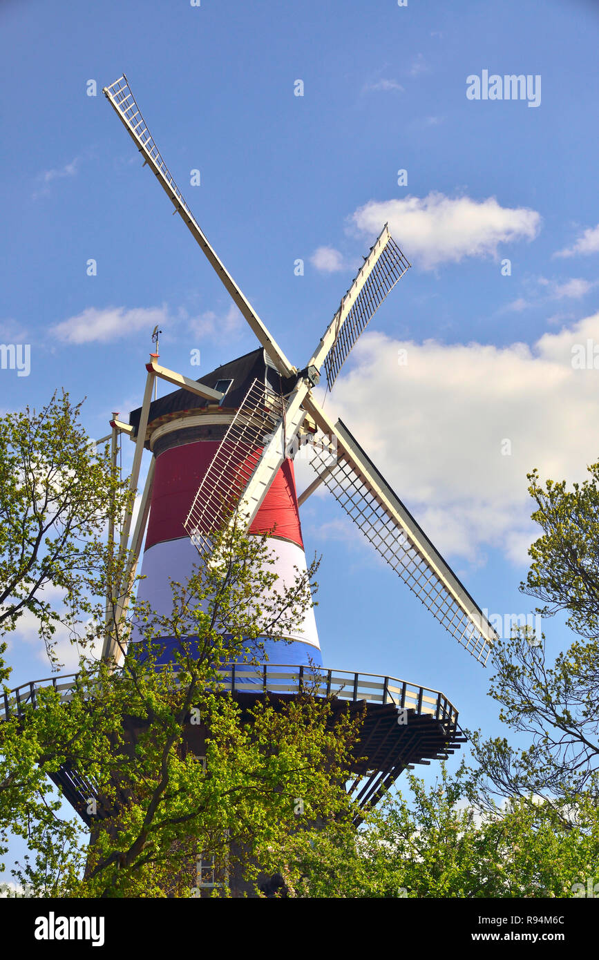 The De Valk windmill in the centre of the town of Leiden dressed in the colours of the Dutch flag on King's Day, Holland, Netherlands Stock Photo