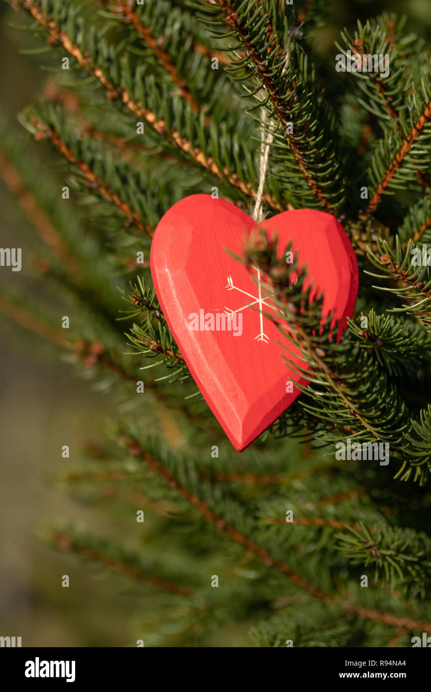 Red Love Tree Heart Branches Stock Photos Red Love Tree Heart