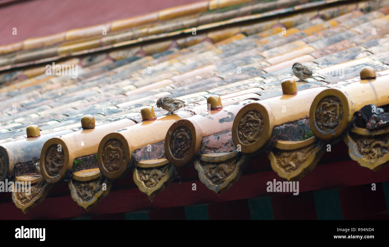 Two birds standing on ornate Chinese roof tiles Stock Photo