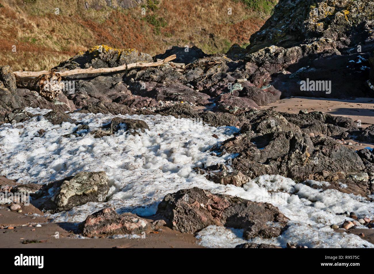 Spume, beach foam, ocean foam or sea foam high on the beach of St,. Cyrus, Aberdeenshire, Scotland after storm. - Stock Image