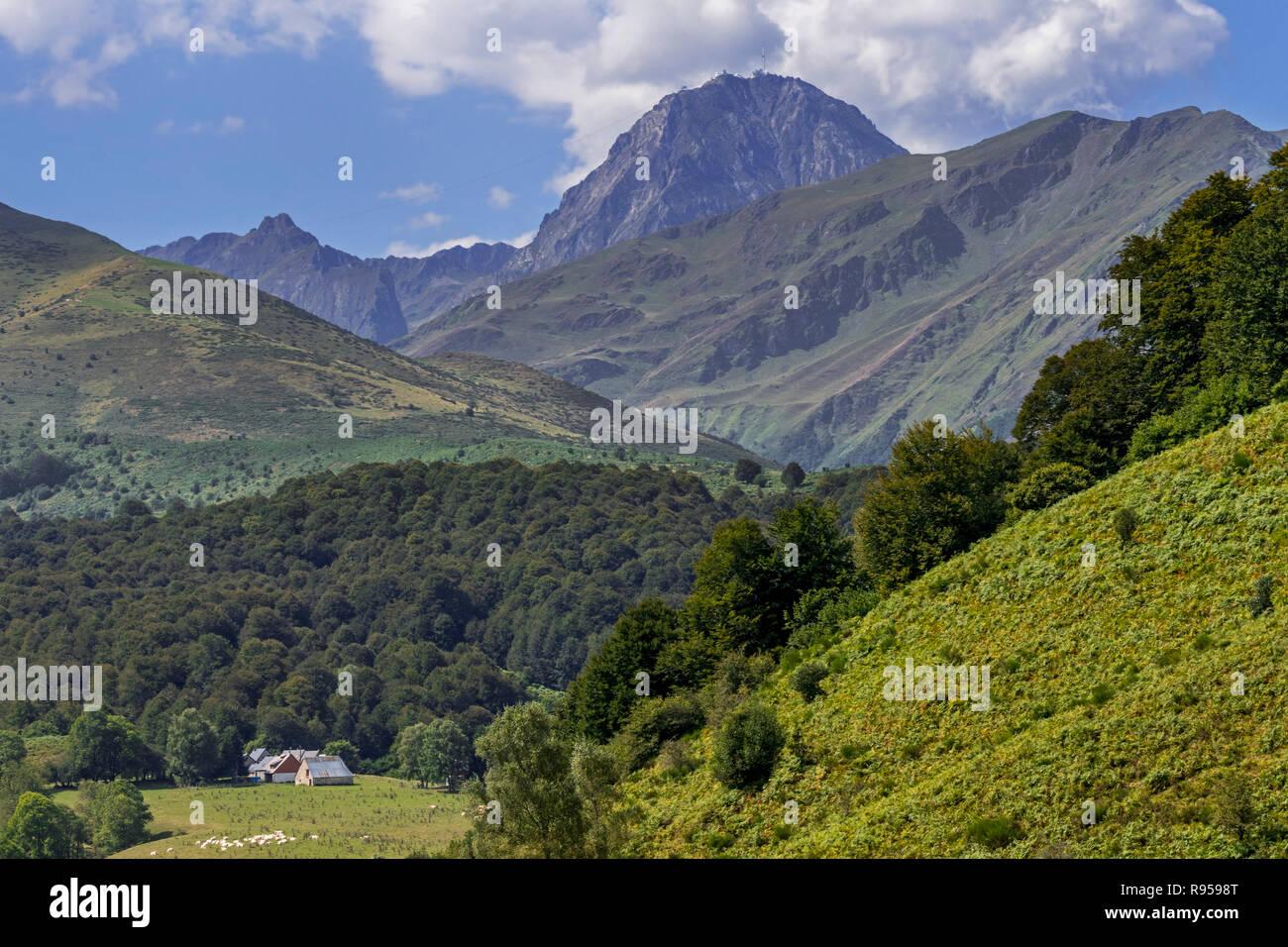 Farm and the mountain Pic du Midi de Bigorre in the French Pyrenees, Hautes-Pyrénées, France - Stock Image